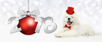 Text 2018 with Christmas ball and magic funny dog with red hat. Isolated on white Royalty Free Stock Photo