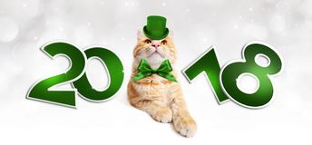 Text 2018 with Christmas magic ginger cat with green hat. Isolated on white Stock Image