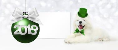 Text 2018 com bola do Natal e o cão engraçado mágico com chapéu verde ilustração royalty free