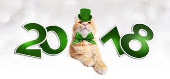 Text 2018 com o gato mágico do gengibre do Natal com chapéu verde Imagem de Stock