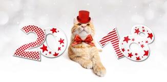Text 2018 com o gato mágico do gengibre do Natal com chapéu vermelho Fotografia de Stock Royalty Free