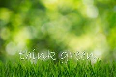Text denken Grün auf grünem Gras auf unscharfem grünem bokeh Hintergrund Lizenzfreie Stockfotos