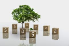 Text em dados com árvore e copie o espaço para o texto da inserção em b branco Fotos de Stock Royalty Free