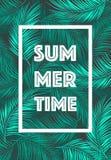 Text för den sommarTid affischen lämnar bakgrundsvektorn Royaltyfri Foto
