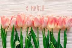 8 text för marsch på rosa tulpan på vit lantlig träbakgrund G Royaltyfri Bild