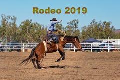 Text för rodeo 2019 - cowboy Riding A som sparkar bakut Bronchästen på en landsrodeo royaltyfri fotografi