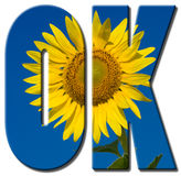 Text filled with an image of sunflower Royalty Free Stock Image