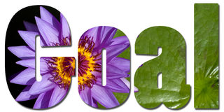 Text filled with violet waterlily Royalty Free Stock Images