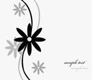 Text floral card Stock Images