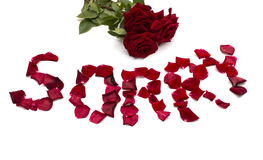 Text forgive also bouquet  of red roses Royalty Free Stock Image