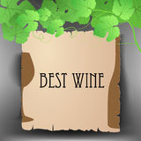 Text frame with grape leaves Stock Images