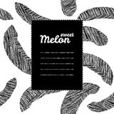 Text frame with melon background. Black and white. Repeating harvest backdrop. Stock Images