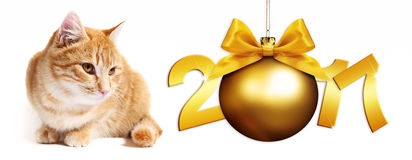 2017 text ginger cat with golden christmas ball whit ribbon bow Royalty Free Stock Photo