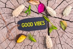The text good vibes in tag. The text good vibes in black tag on cracked tree stump with dried color flowers Stock Image