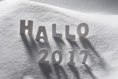 Text Hallo 2017 Means Hello With White Letters In Snow. White Letters Building German Text Hallo 2017 Means Hello 2017 In Snow. Snowy Scenery For Happy New Year stock image
