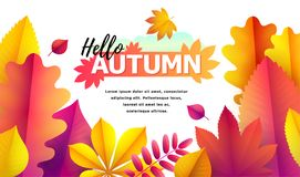 Text Hello Autumn, discounts from 50. Autumn Seasonal sale. Up to 50 off. Vector Background of falling leaves. Text Hello Autumn, discounts from 50. Autumn Vector Illustration