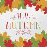 Text Hello autumn and maple leaves. Lettering. Colorful card. Hand drawning. Vector. EPS 10 vector illustration