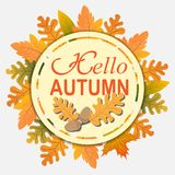Text  Hello Autumn of  yellow leaves of oak, maple, birch. Abstract nature background Stock Image
