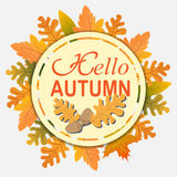 Text  Hello Autumn of  yellow leaves of oak, maple, birch. Abstract nature background Stock Photos
