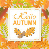 Text  Hello Autumn of  yellow leaves of oak, maple, birch. Seamless pattern nature background Stock Images