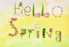 Text HELLO FJÄDRAR gjort av örter och blommor Arkivfoton