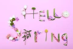 Text HELLO FJÄDRAR gjort av örter och blommor Royaltyfri Bild