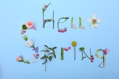 Text HELLO FJÄDRAR gjort av sidor och blommor fotografering för bildbyråer