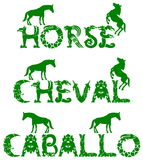 Text horse in 3 languages Stock Photography