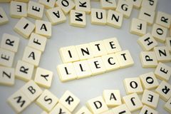 Text intellect on the gray background near the letters. Concept royalty free stock photos