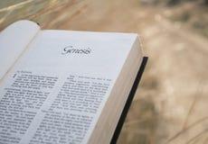 Text-Kapitel Genesis Holy Bible lizenzfreie stockfotos
