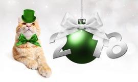Text 2018 med jul klumpa ihop sig och den magiska ljust rödbrun katten med gröna mummel Royaltyfri Bild