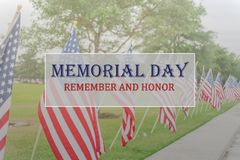 Text Memorial Day and Honor on row of lawn American Flags stock images