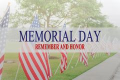Text Memorial Day and honor on row of lawn American Flags stock photo