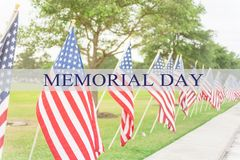 Text Memorial Day on row of lawn American Flags royalty free stock photos