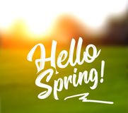 Text message hello spring, against a background of a spring landscape. Text message hello spring, against a defocused background of a spring landscape. Vector Stock Photo