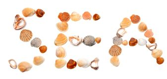Text SEA composed of seashells Stock Images