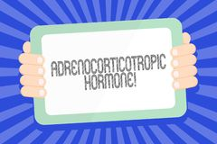 Text sign showing Adrenocorticotropic Hormone. Conceptual photo hormone secreted by pituitary gland cortex Color Tablet. Text sign showing Adrenocorticotropic stock illustration
