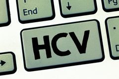 Text sign showing Hcv. Conceptual photo Infective agent that cause the inflammation of the liver Viral infection.  royalty free stock images