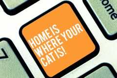 Text sign showing Home Is Where Your Cat Is. Conceptual photo Kitten lovers feline protection cute animals Keyboard key. Intention to create computer message stock images