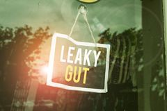Text sign showing Leaky Gut. Conceptual photo A condition in which the lining of small intestine is damaged Empty black