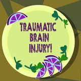 Text sign showing Traumatic Brain Injury. Conceptual photo Insult to the brain from an external mechanical force Cutouts. Of Sliced Lime Wedge and Herb Leaves stock illustration