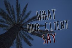 Text sign showing What Our Client Say. Conceptual photo Customers Feedback or opinion about product service Tree palm sky blue nat. Ural scene landscape love Stock Photo