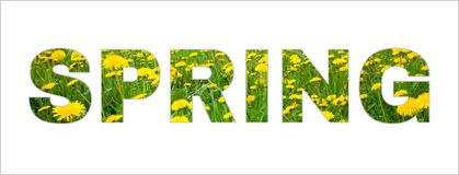 Text Spring on isolated white background. Beautiful photo Collage Frame Word Spring made from photos dandelion Flowers. Web banner royalty free stock photography