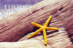 Text summer time and a starfish on an old tree trunk in the beac Stock Images