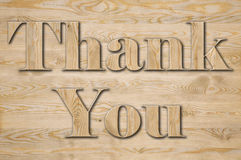 Text THANK YOU Royalty Free Stock Images