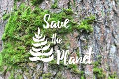 Inspirational text Save the planet on the tree bark. Text in white color Save the planet on the tree bark. Inspirational quote for Earth day, ecological sign Stock Image