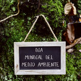 Text world environment day in spanish. Closeup of a wooden-framed chalkboard with the text dia mundial del medio ambiente, world environment day written in Stock Photos