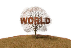 Text world tree Royalty Free Stock Photography