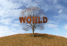 Text world tree Royalty Free Stock Images
