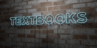 TEXTBOOKS - Glowing Neon Sign on stonework wall - 3D rendered royalty free stock illustration Royalty Free Stock Images